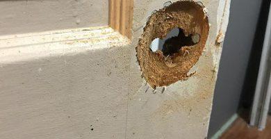 Reparación de puertas y ventanas de madera